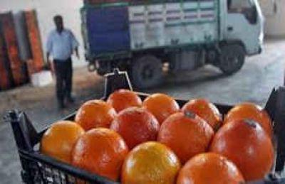 کرونا با طعم میوه/ پیدا کنید پرتقال فروش را !!
